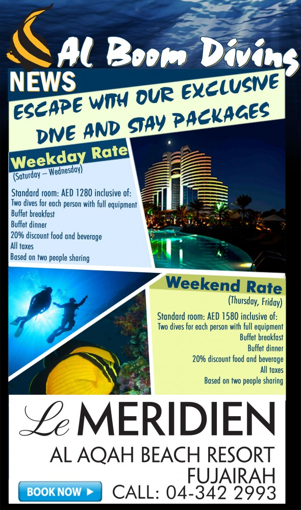 Escape with our exclusive dive and stay packages