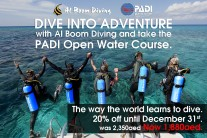 Dive into adventure with Al Boom Diving and take the Padi Open Water Course