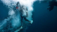 12 Diving Breaks To Explore The Deep Blue