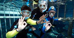 Where is the best diving in Dubai and the UAE?