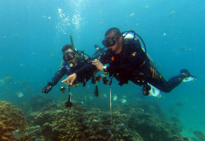 Discover Scuba Diving in Fujairah (1 Pool & 1 Sea Dive) 3