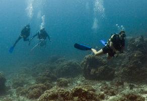 PADI Open Water Diver Course 3