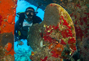 PADI Underwater Archaeology Diver Distinctive Course 2