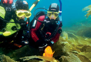 PADI Fish ID Course